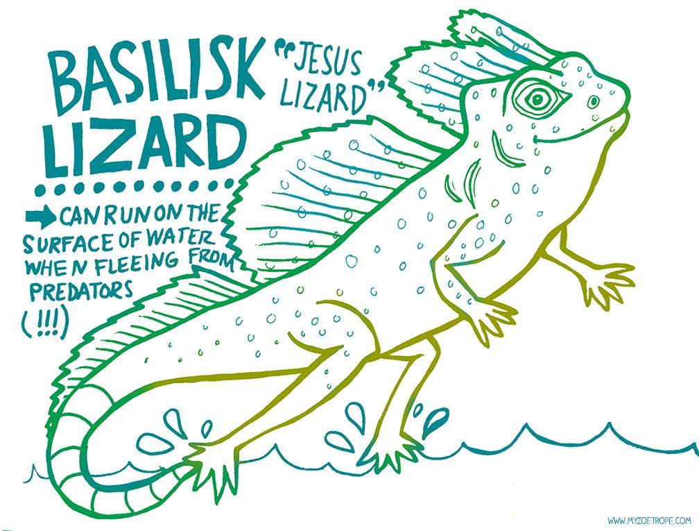 365 Days Of Animals By My Zoetrope 022 Basilisk Lizard Aka Jesus Lizard Pen Ink Digital Basilisk Lizard Lizard Craft Lizard