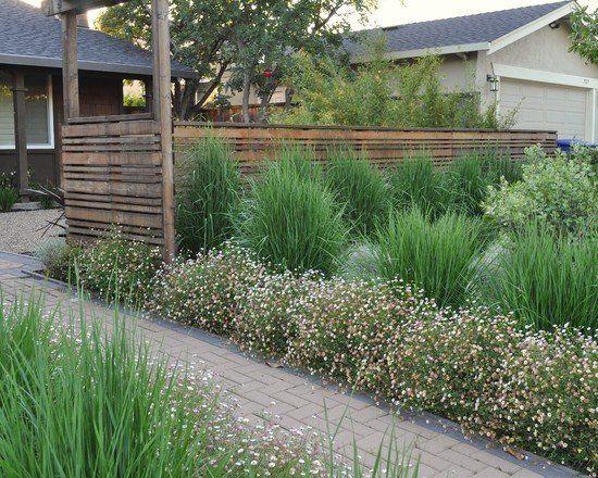 Gräser Im Garten Gestaltungsideen den alten rasen ersetzen hohe stauden ziergräser sichtschutz im