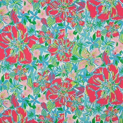 Lilly Pulitzer Besame Mucho Worth Hotty For Lee Jofa