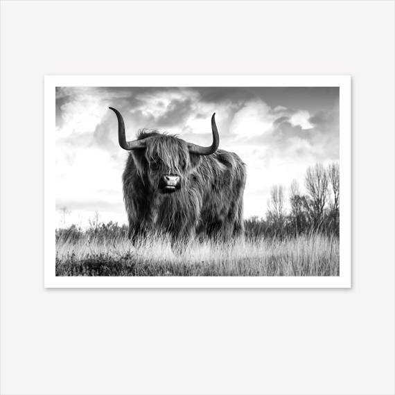 Scandinavian Homeoffice Design: Highland Cow Printable, Cow Print, Scandi Home Decor