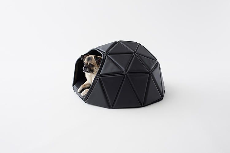 i didn't know dog beds could be this badass | business design, dog