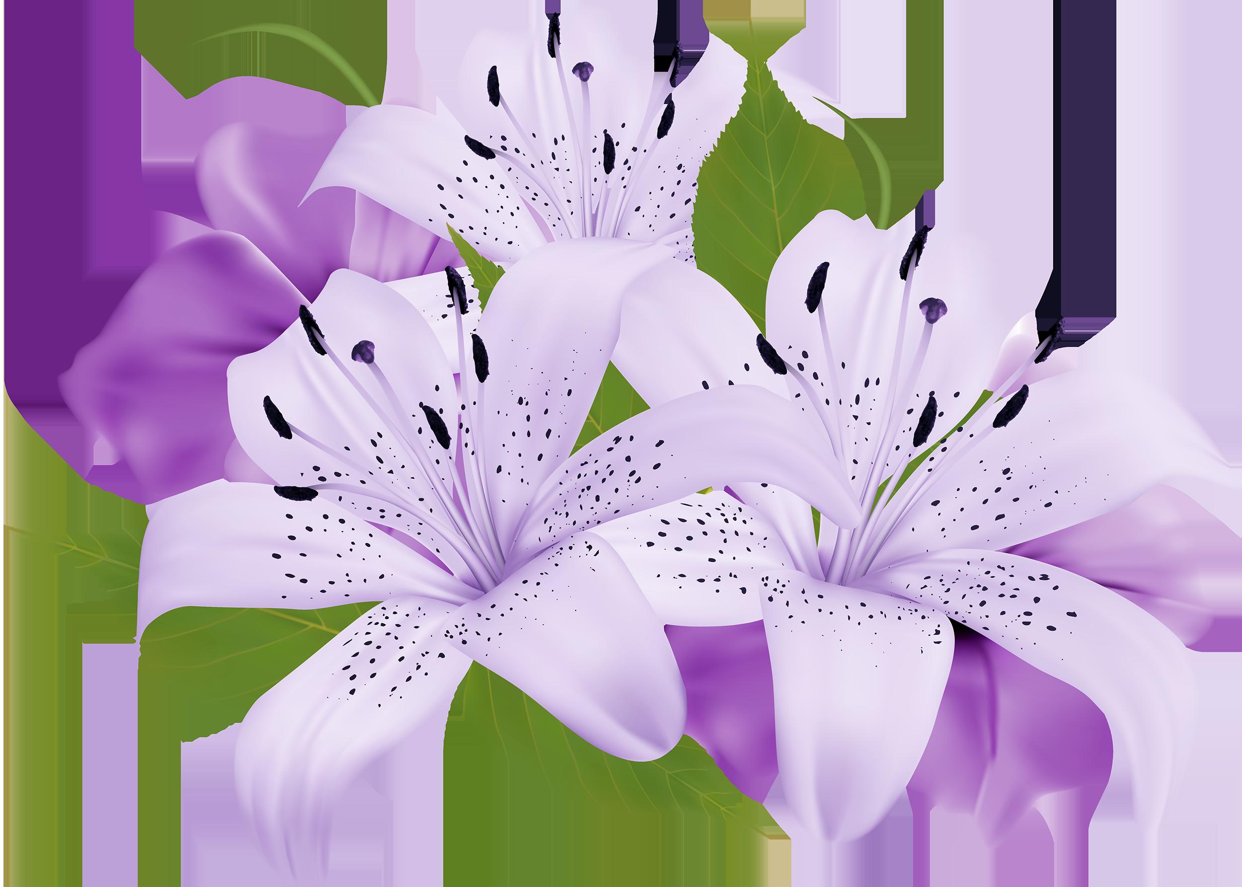 Purple decorative flowers png clipart ogrd pinterest flowers purple decorative flowers png clipart izmirmasajfo