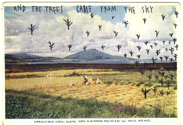 And the trees came from the sky