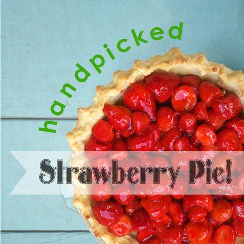 handpicked-strawberry-pie-header2.jpg 485×485 pixels