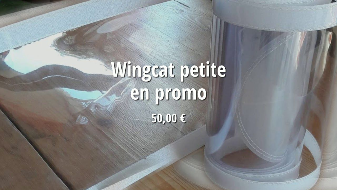 Wingcat Fr Wingcat Petite En Promo Chatiere Petit