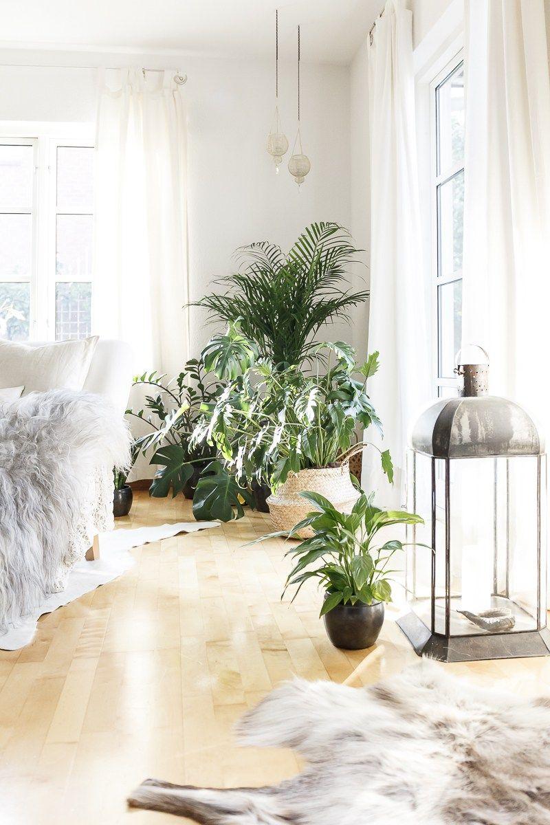 Inspiration urban jungle bloggers pinterest for Zimmerpflanzen wohnzimmer