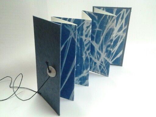 Livre D Artiste Cyanotype Carole Penin Book Art Book Art Artist Books Book Sculpture
