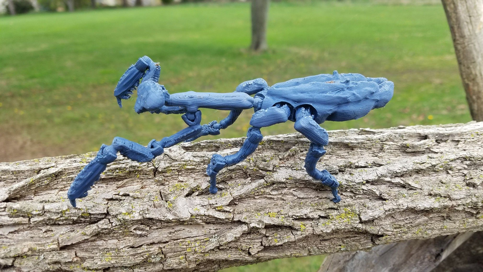 Fully Articulated Praying Mantis printed with Flashforge Finder and