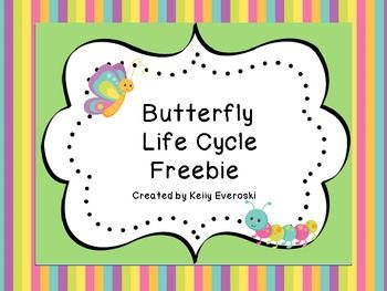 1000+ images about Butterfly Life Cycle on Pinterest | Life cycles ...