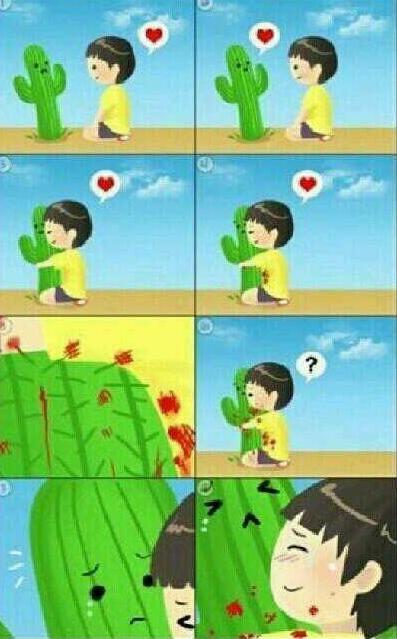 El amor o cómo morir desangrado acariciando un cactus.