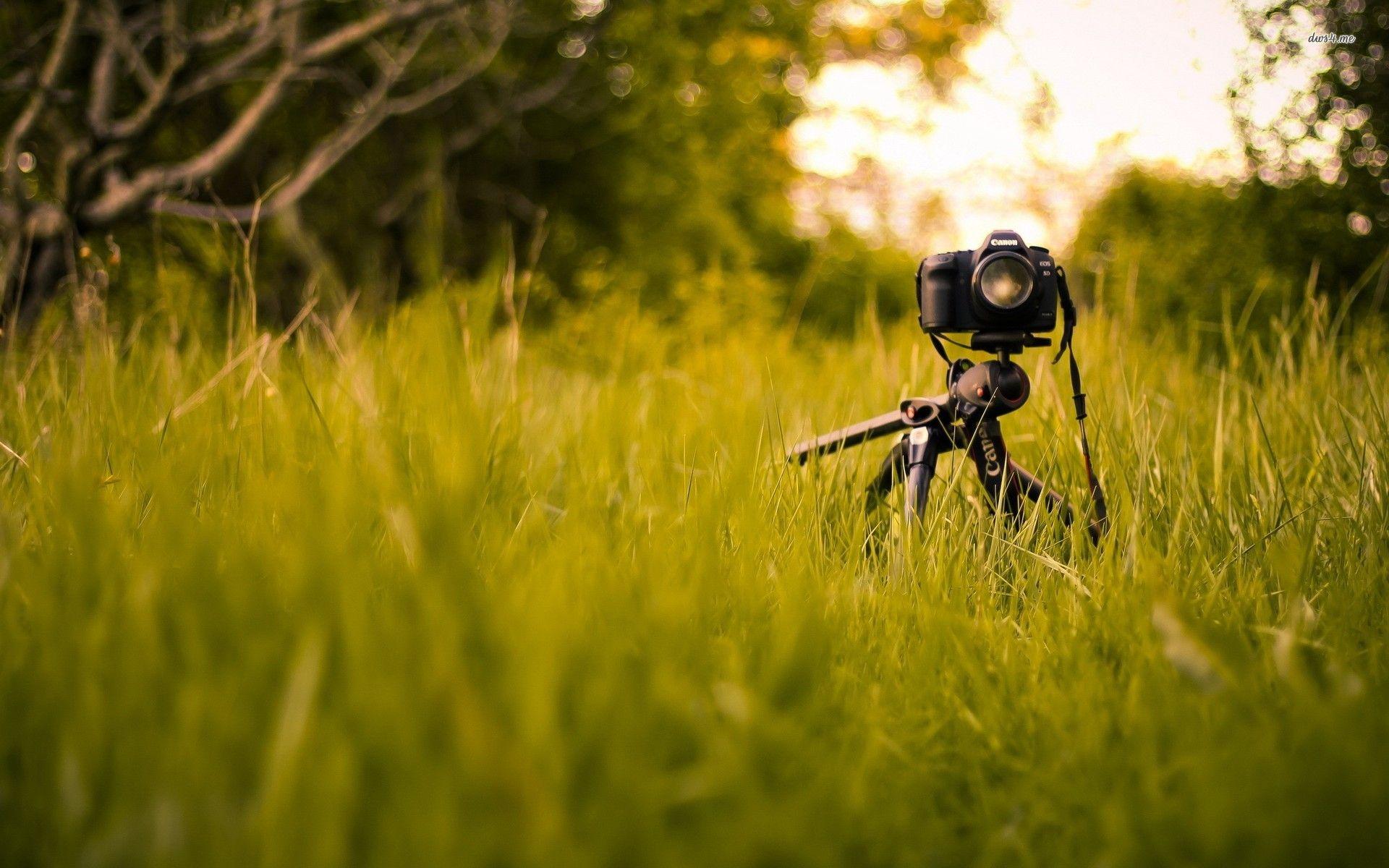 Photography Camera Backgrounds Google Search Camera Wallpaper Grass Wallpaper Technology Wallpaper
