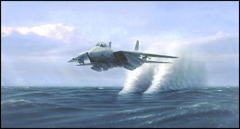 Vol En Rase Motte D Un Avion De Chasse Avion De Chasse Avion Avion De Combat