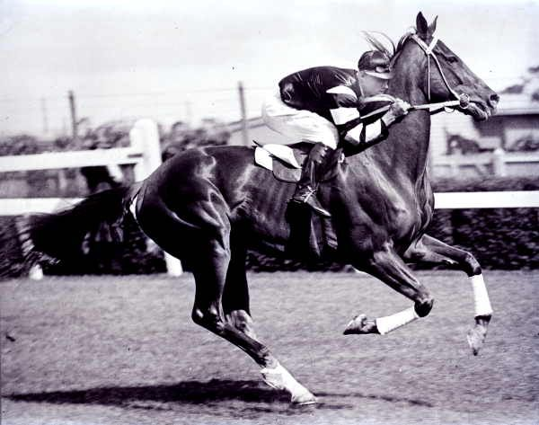 Phar Lap. Sensational Australian horse who died April 5,1932 under 'mysterious' circumstances. Rent the movie...it's very good