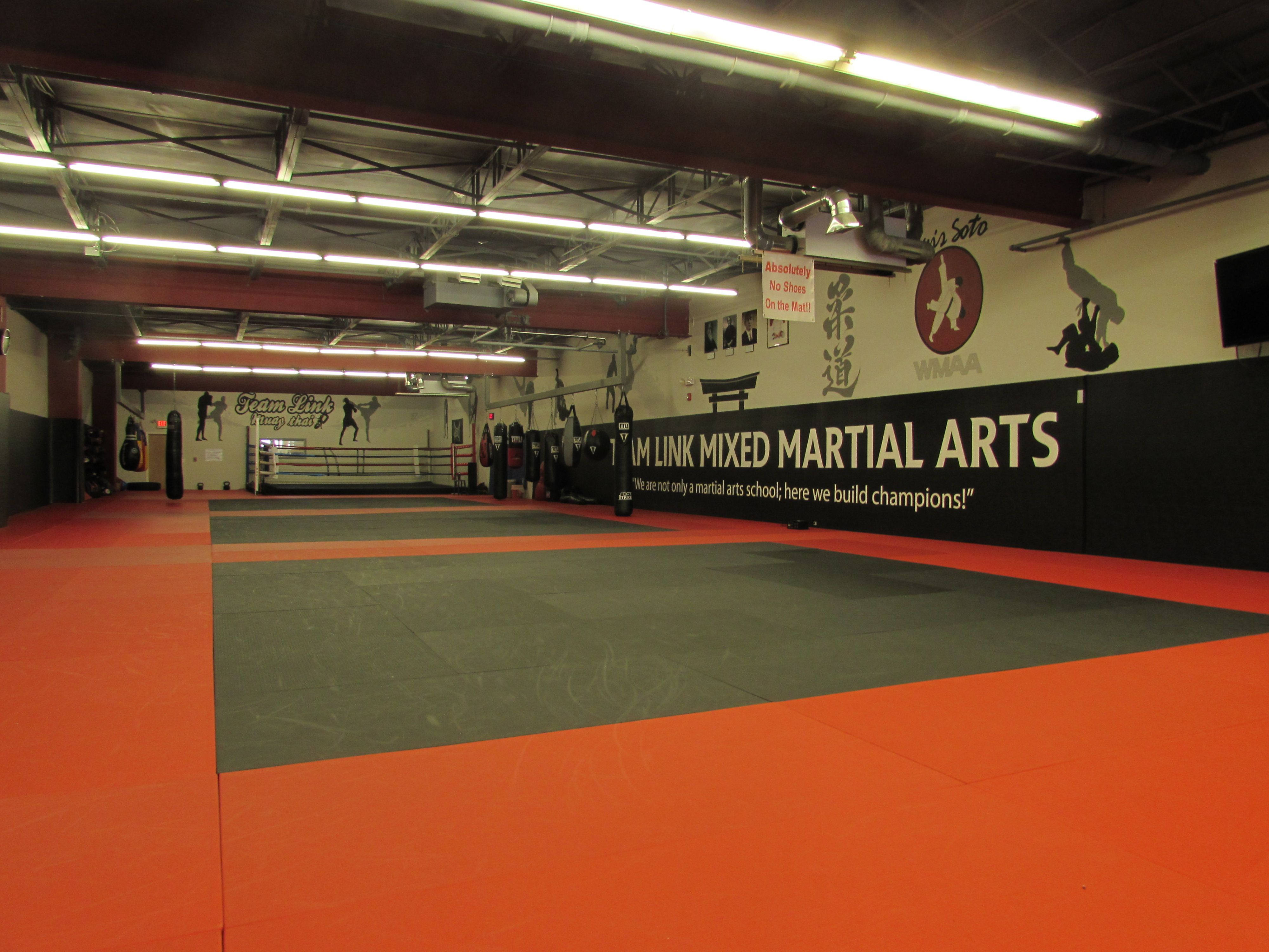72 Team Link Worcester Martial Arts Training Center Ideas Martial Arts Training Martial Arts Training Center