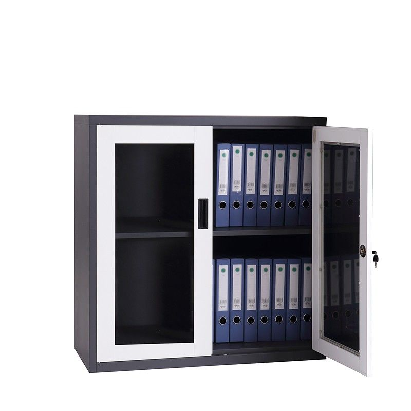 Cheap Factory Sale Modern Office Storage Cabinet Steel 2 Door Filing