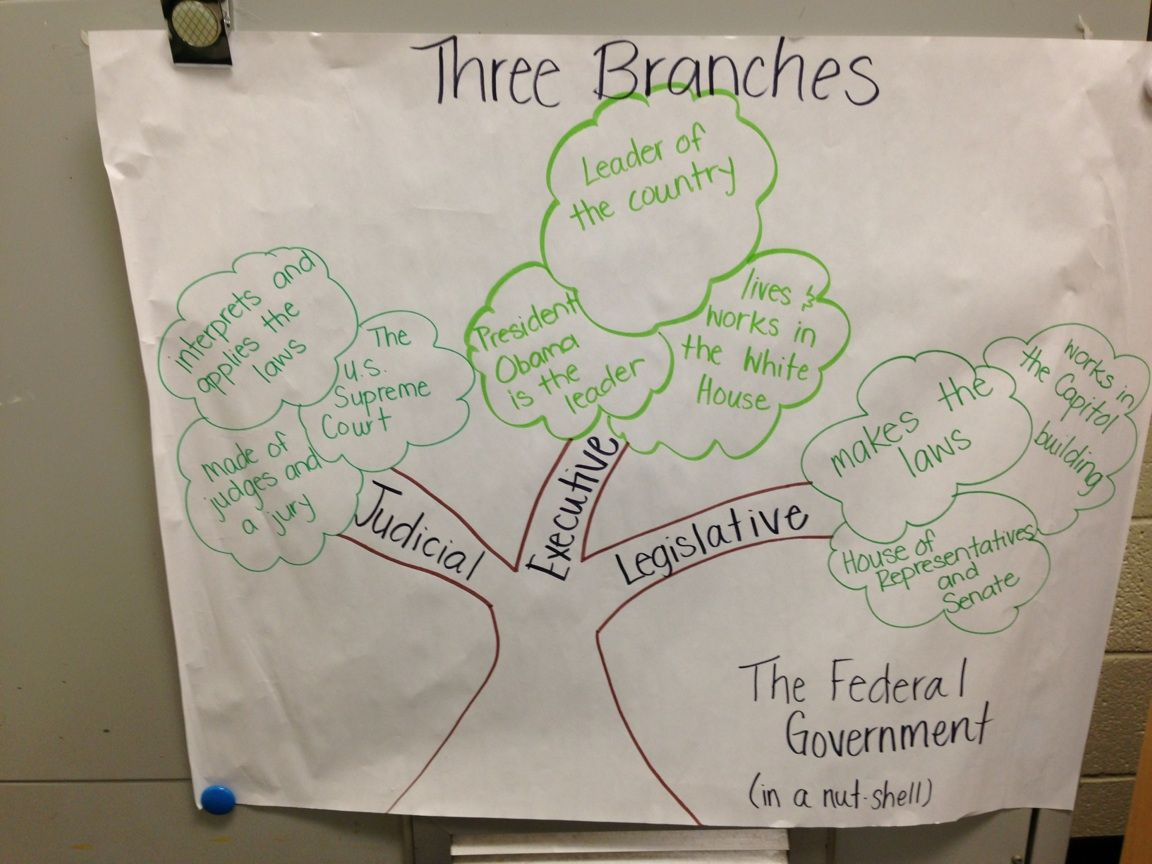 Three Branches Of Government Anchor Chart Judicial Executive Legislative And All The
