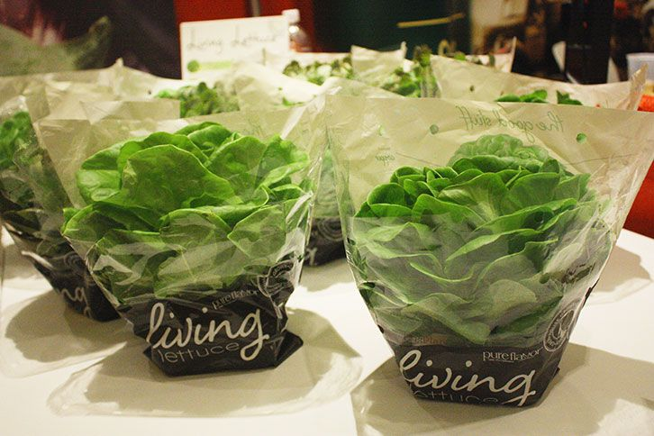 6 Products Not To Miss From This Year S Viva Fresh Produce Expo Vegetable Packaging Salad Packaging Food Packaging Design