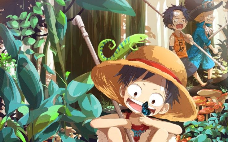 one piece monkey d luffy sabo portgas d ace hd wallpaper