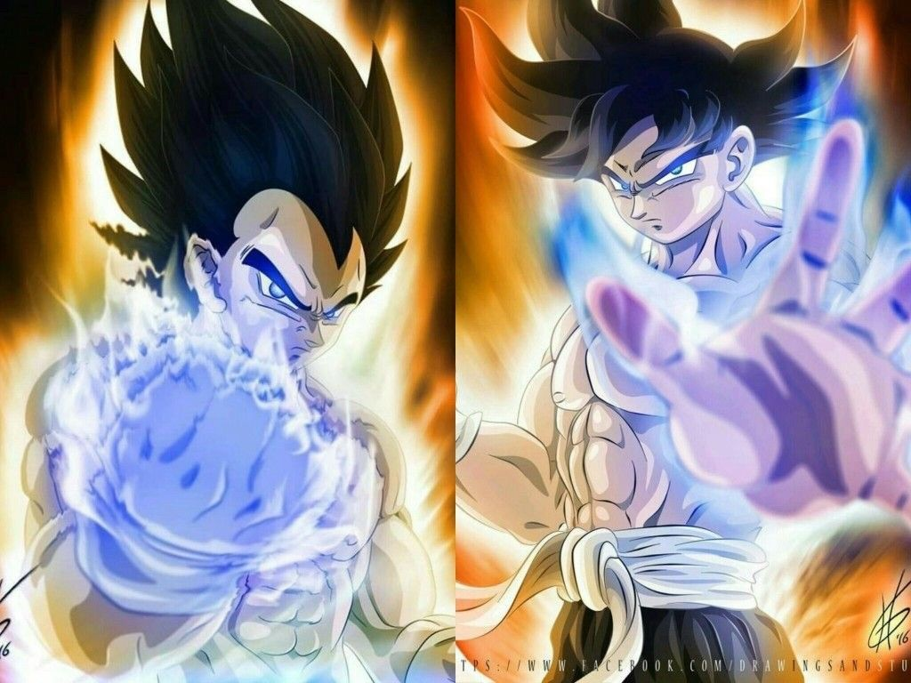 Dragon Ball Super Goku And Vegeta Ultra Instinct Dragon Ball Z Dragon Ball Super Goku Dragon Ball Super