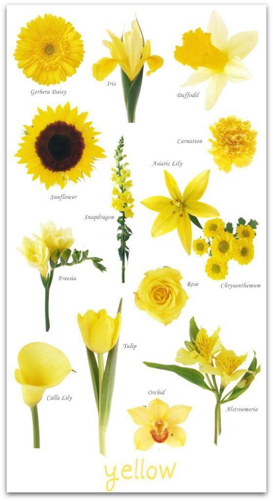 Yellow Wedding Flowers on Pinterest Yellow Weddings Wedding