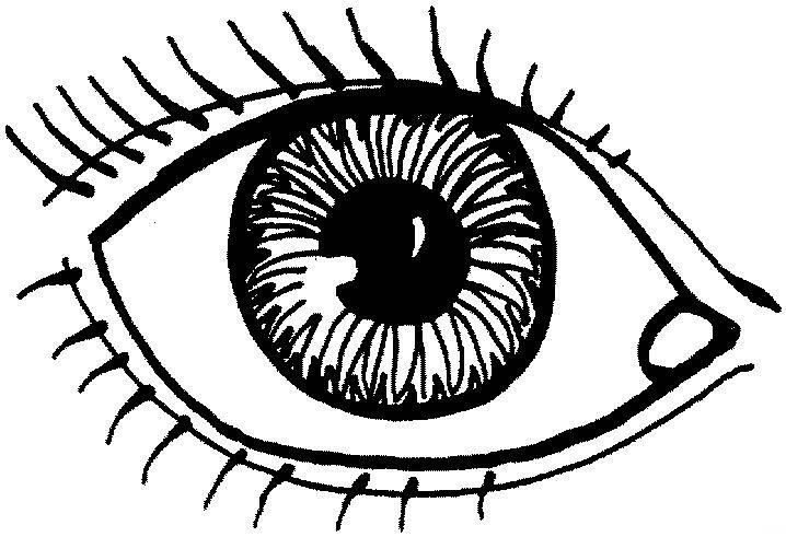Eye Printable Coloring Page Google Search Preschool Coloring Pages Sunday School Coloring Pages Preschool Pictures