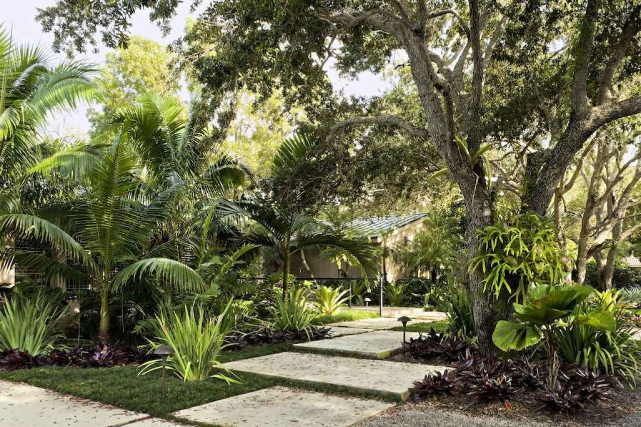 modern tropical garden design ideas
