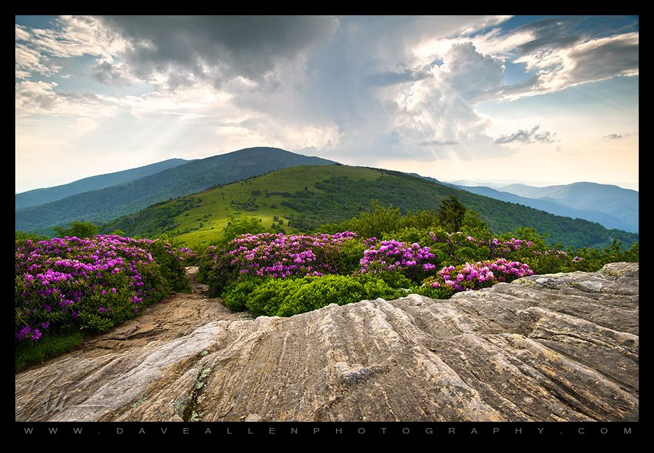 """""""Dave Allen is an internationally published landscape photographer who is based in Hendersonville, NC."""" • www.daveallenphotography.com • Dave Allen Photography"""