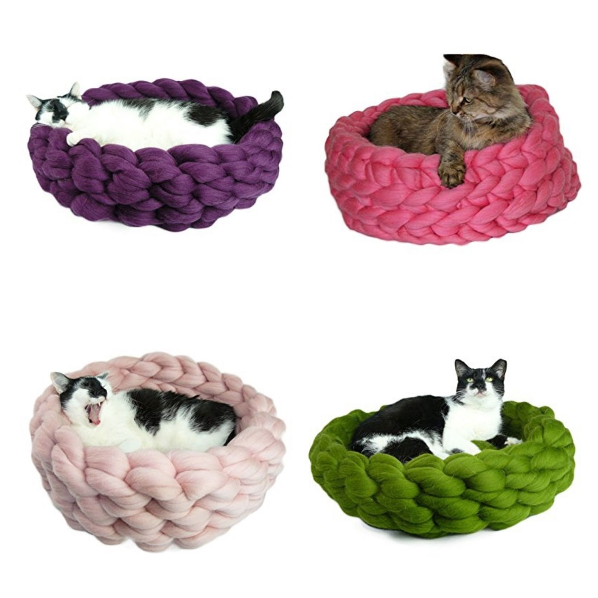 Best gifts for cats and cat lovers cat lover gifts cat