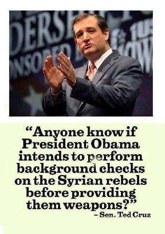 Ted Cruz Quotes Impressive Sented Cruz Quote  Common Sense Conservative Politics And Politics