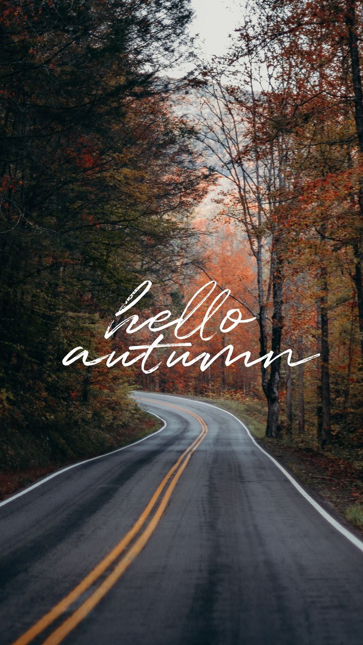 Wallpaper #7  Hello autumn #hellofall