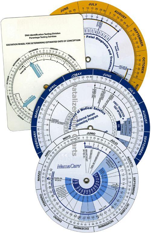 Pregnancy Due Date Calculator Wheel Charts