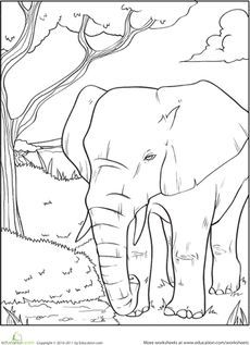 Elephant Coloring Page | Pinterest | Worksheets, African elephant ...