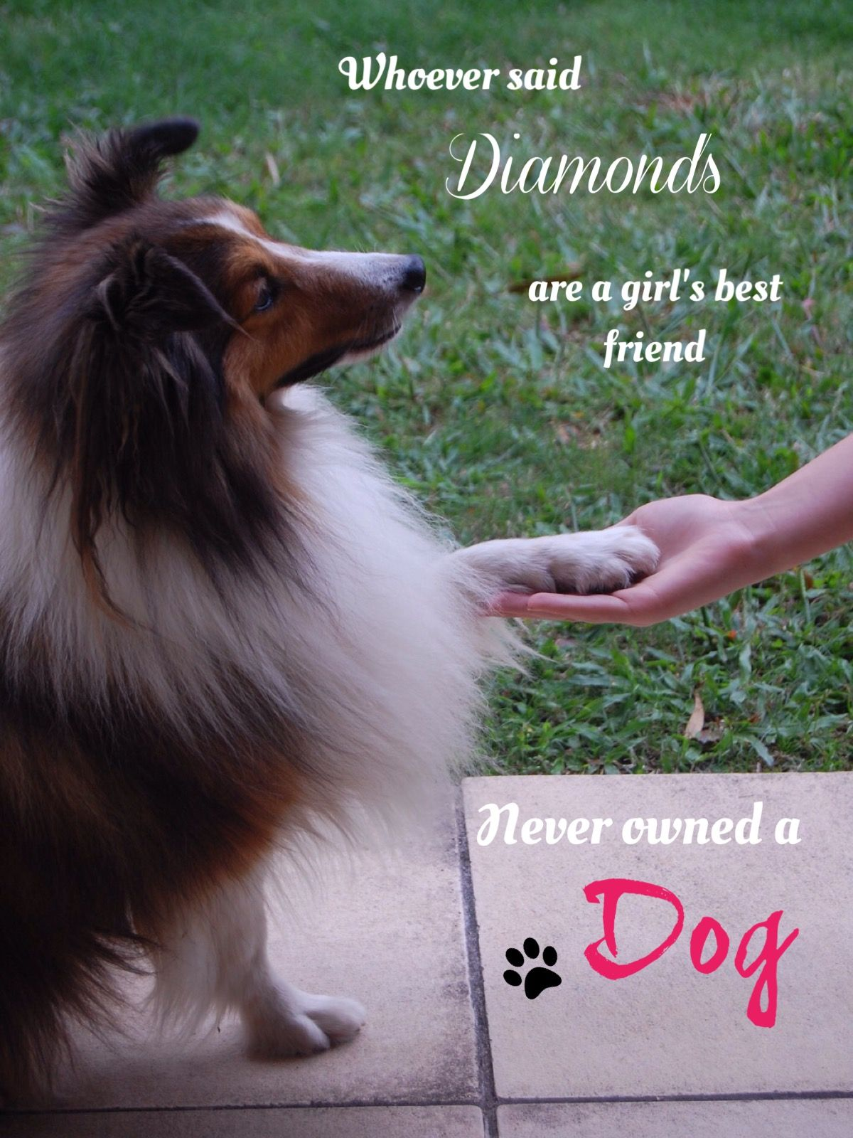 This Quote Is So True No Diamond Could Ever Replace The Bond