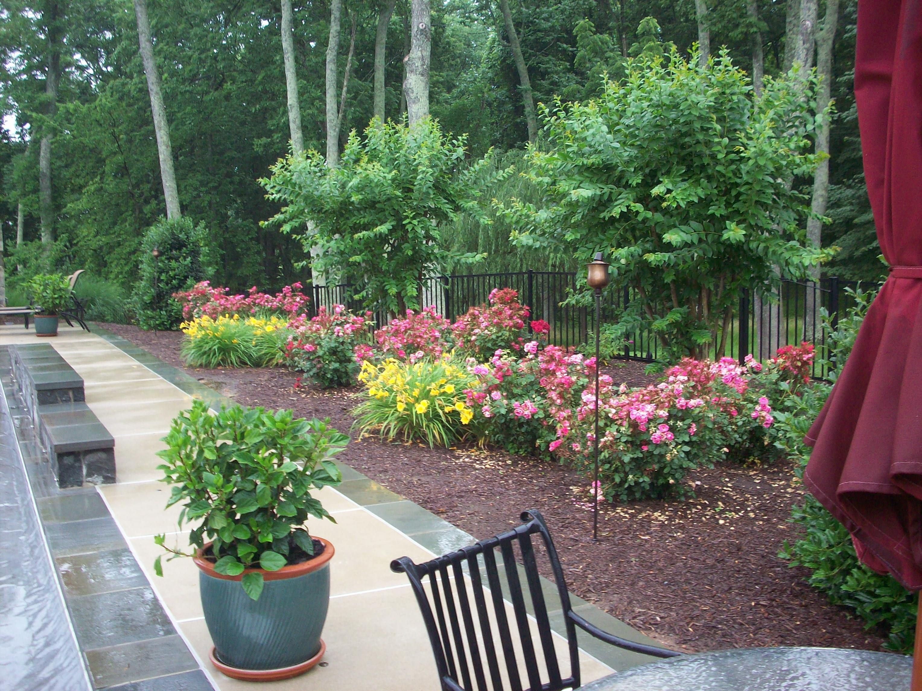 landscape ideas for full west sun zone 10 front yards - Google ...