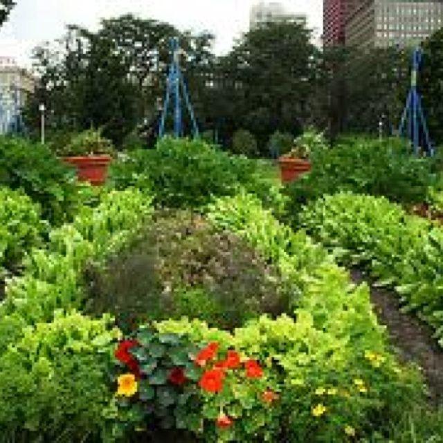 The Historical Design Precedent Is From The Gardens Of The French Renaissance And Baroque Garden A La Francaise Eras Urban Garden Potager Garden Kitchen Garden