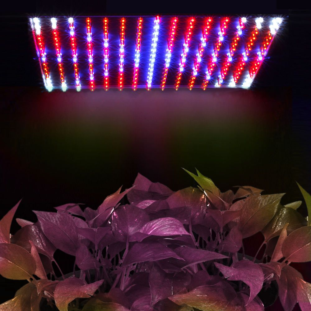 225 Led 14 Watt Hydro Grow Light Panel 14w Lamp Red Blue Indoor Hydroponic Plant Grow Lights For Plants Best Led Grow Lights Led Grow Lights