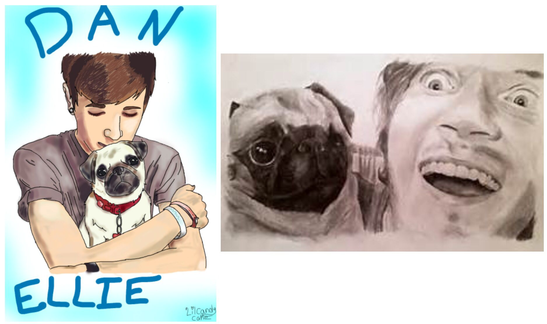 Both Of My Favorite Youtubers Have Pugs Weird Lol