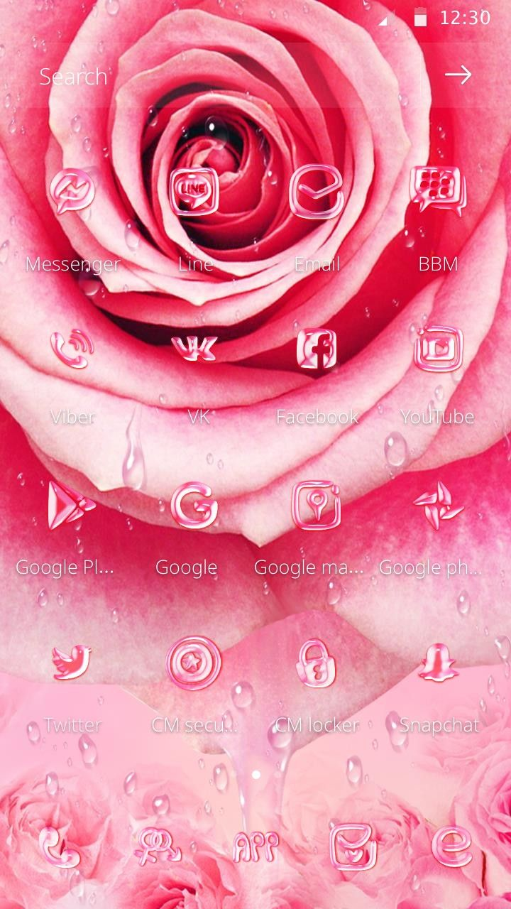 Pink Rose Theme For Valentine S Day Theme Phone Themes Pink Rose