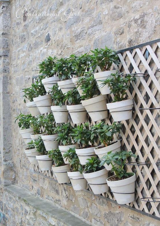 Montreal C Est Magnifique Garden Wall Planter Trellis Plants