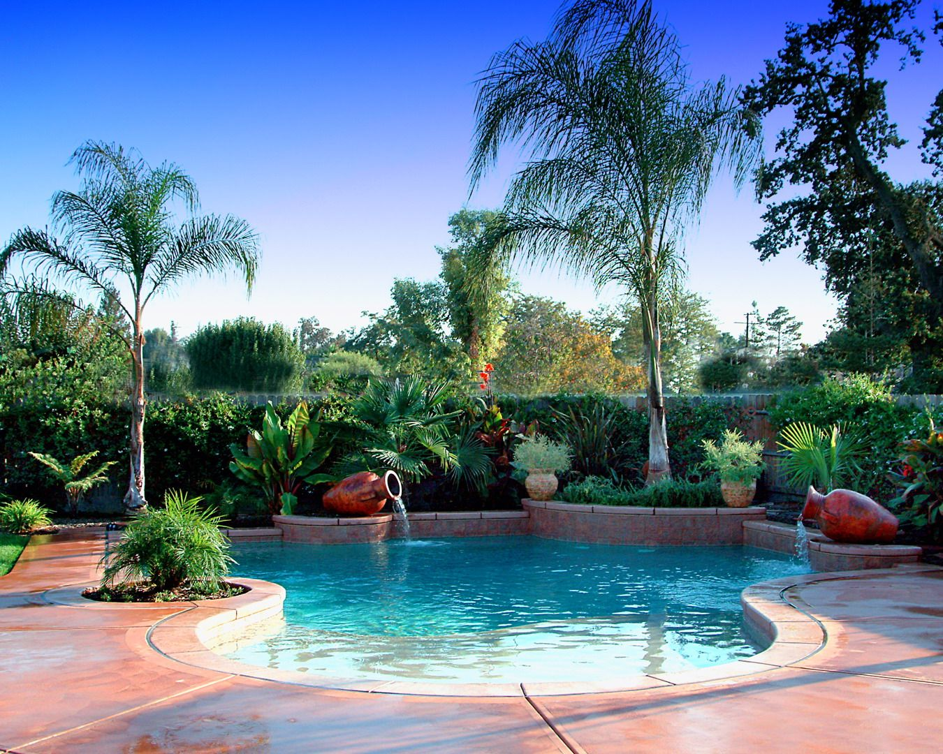 Tropical landscaping ideas around pool tropical pool for Pool landscape design