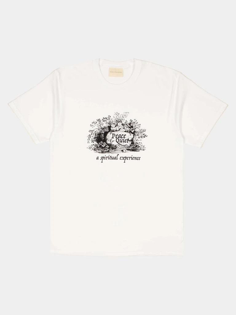 Spiritual Experience T Shirt In 2020 T Shirt Shirt Online Tshirts Online