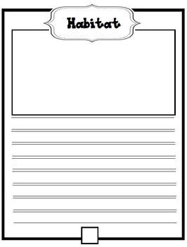 Informational Writing Report Templates Informational Writing