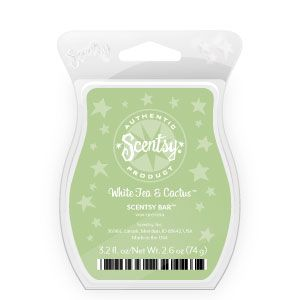 White Tea and Cactus Scentsy Bar    A clean, crisp and refreshing floral mix with green notes.