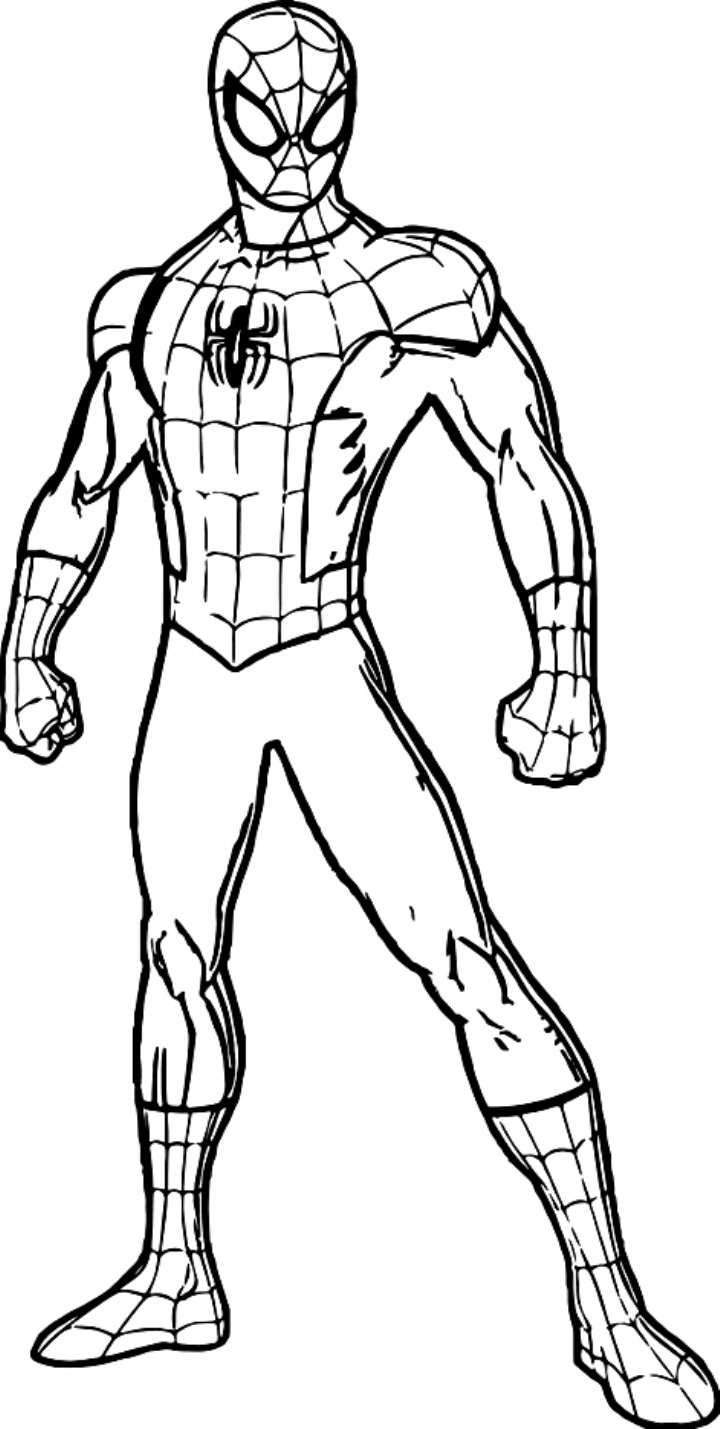 Marvelous Image Of Free Spiderman Coloring Pages Coloring Pages Marvel Coloring Avengers Coloring Pages Hulk Coloring Pages