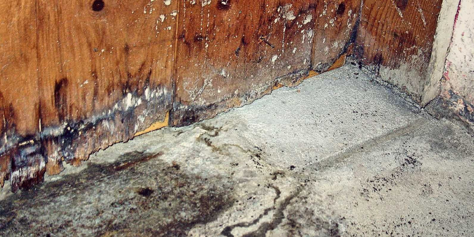How To Handle A Sewer Backup in Your Basement Springfield