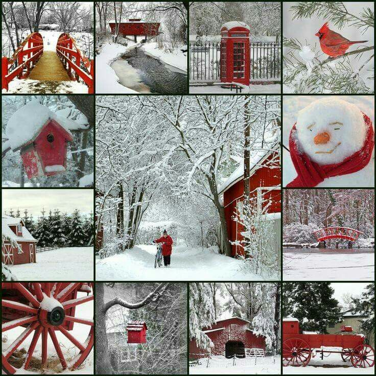 1/12/16 Winter