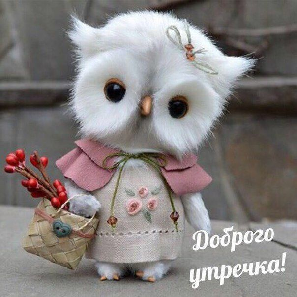 Пин от пользователя Вера Соколенко на доске Доброе утро (с ...