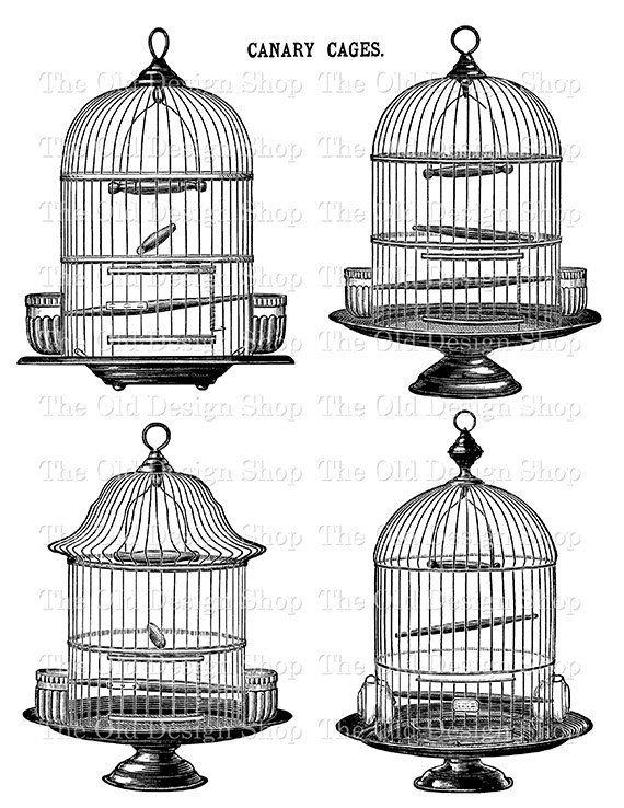 Vintage Birdcage Set 2 Printable Bird Cage Commercial Use Etsy In 2021 Vintage Bird Cage Bird Cage Birdcage Drawing