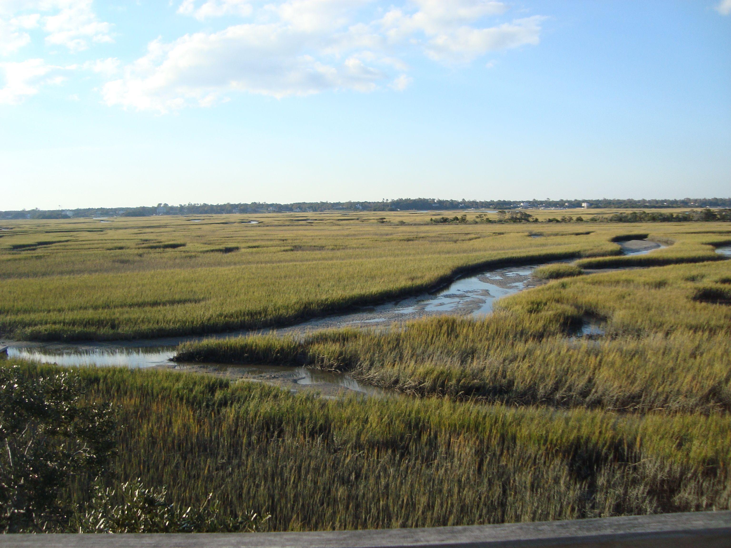 Sun Setting On Marsh On Figure Eight Island Country