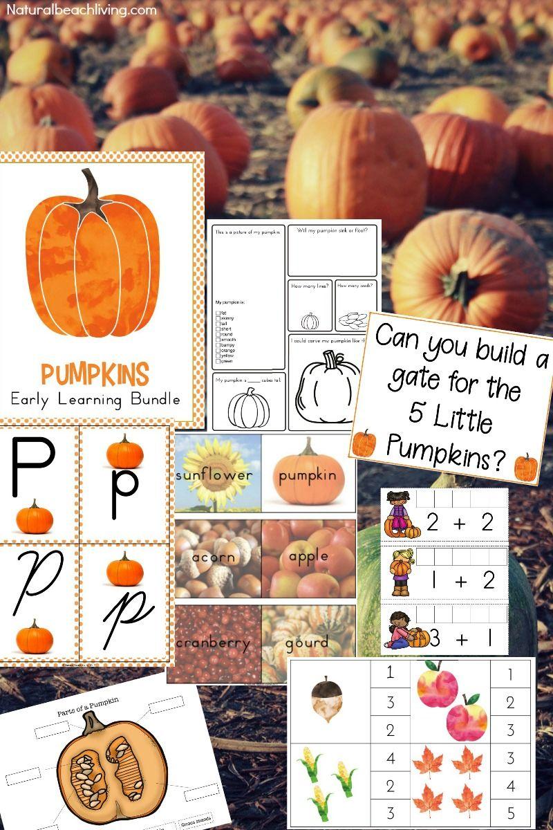Best Kindergarten and Preschool Pumpkin Theme Lesson Plan